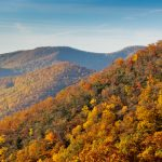 The Best Ways to Enjoy Fall in Northern Virginia (Part 1)